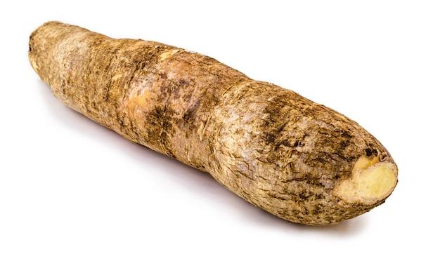 Radice di manioca brasiliana, isolata