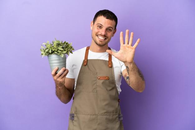 Uomo brasiliano del giardiniere che tiene una pianta sopra fondo porpora isolato che conta cinque con le dita