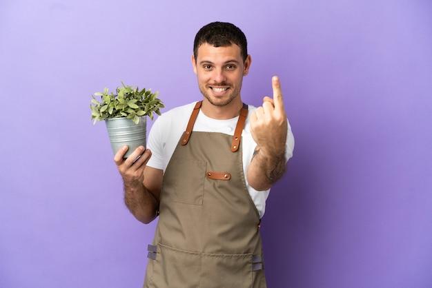 Uomo brasiliano del giardiniere che tiene una pianta sopra fondo porpora isolato che fa il gesto venente
