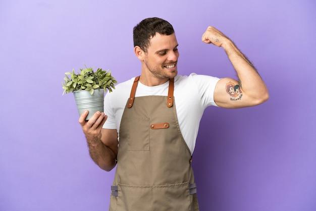 Uomo brasiliano del giardiniere che tiene una pianta sopra fondo porpora isolato che fa un gesto forte