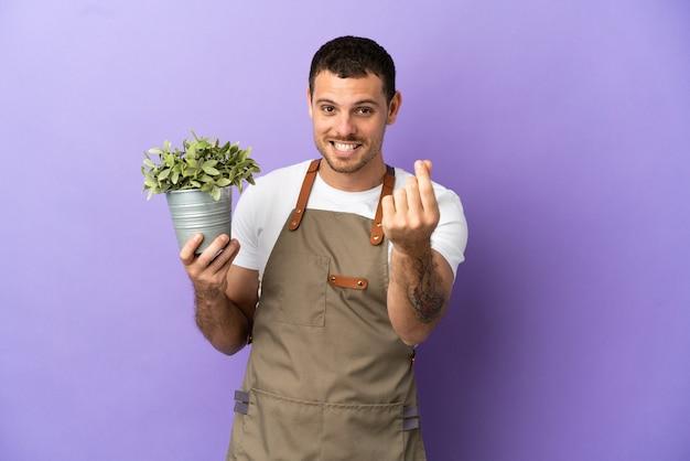 Uomo brasiliano del giardiniere che tiene una pianta sopra fondo porpora isolato che fa il gesto dei soldi