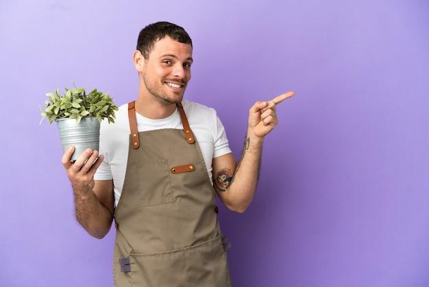 Uomo brasiliano del giardiniere che tiene una pianta sopra fondo porpora isolato che indica dito al lato
