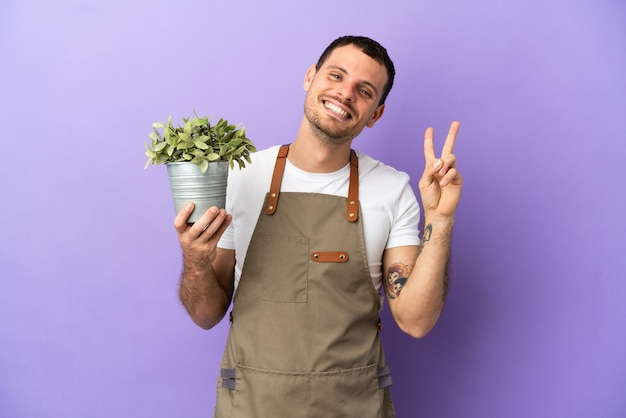 Uomo brasiliano del giardiniere che tiene una pianta sopra fondo porpora isolato che sorride e che mostra il segno di vittoria