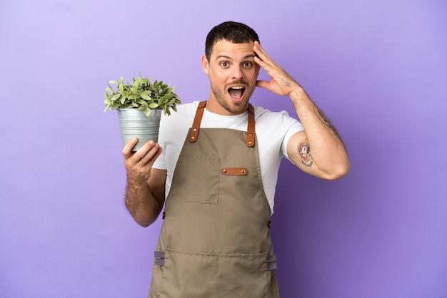 Uomo brasiliano del giardiniere che tiene una pianta sopra fondo porpora isolato con l'espressione di sorpresa