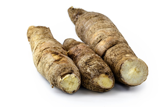 Manioca brasiliana, un ortaggio utilizzato nella cucina brasiliana, chiamato macaxeira,
