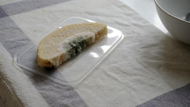 Il pane è ammuffito su un vassoio di plastica in cucina.