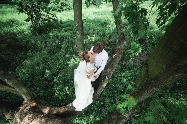 Sposi nel bosco