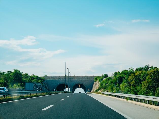 Ponte per animali sulla strada ponte verde sulla strada