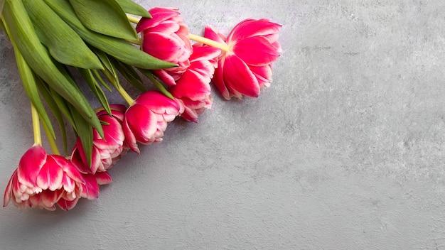 Un luminoso bouquet di tulipani rosso-rosa si trova su uno sfondo di pietra grigia dall'alto. focalizzazione morbida.