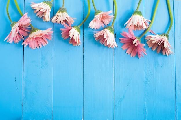 Fiori luminosi su uno sfondo di legno blu spazio libero per il testo copia spazio lupin pink