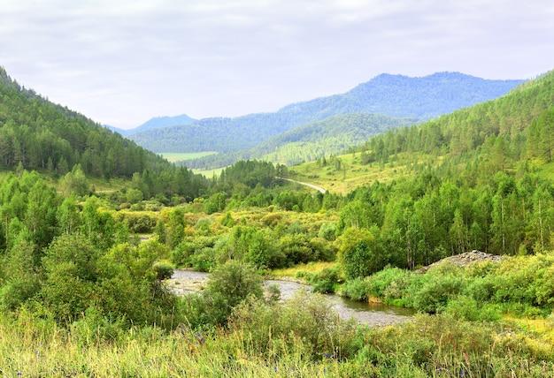 Brillante vegetazione lussureggiante sui pendii della montagna sotto un cielo nuvoloso blu siberia russia