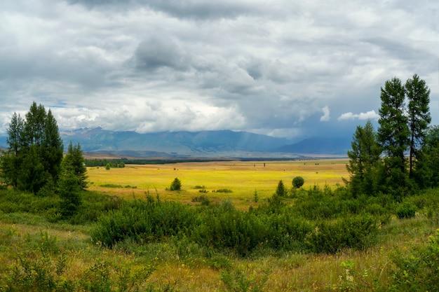 Luminoso paesaggio estivo della steppa. steppa sullo sfondo delle montagne.
