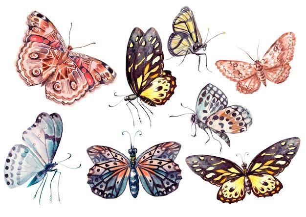 Carta acquerello brillante con farfalle