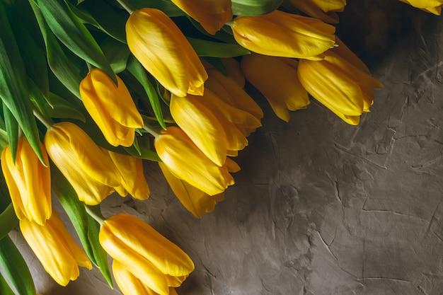 Tulipani gialli luminosi su sfondo grigio cemento. vista dall'alto, piatto. copia spazio