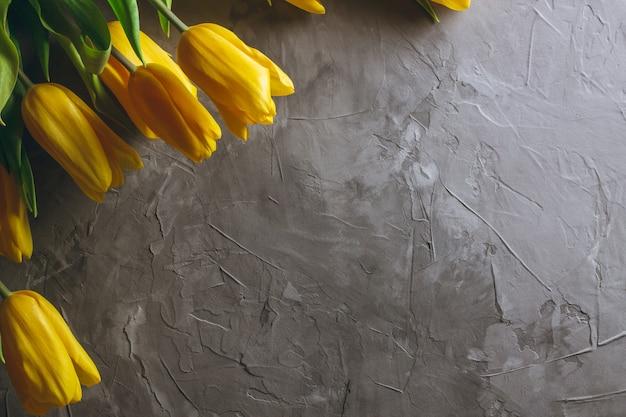 Tulipani gialli brillanti su sfondo grigio cemento. vista dall'alto, piatto. copia spazio