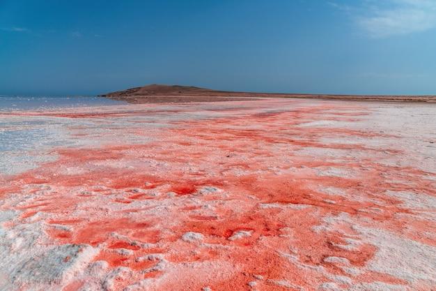 Salamoia e sale di un lago rosa koyash colorato dalla microalga dunaliella salina