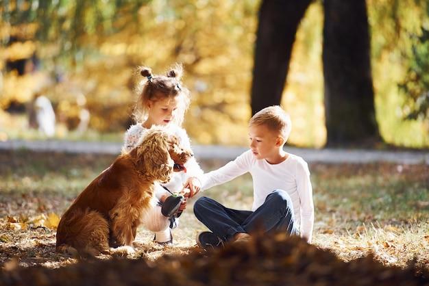 Fratello e sorella si divertono nel parco autunnale con il loro simpatico cagnolino.