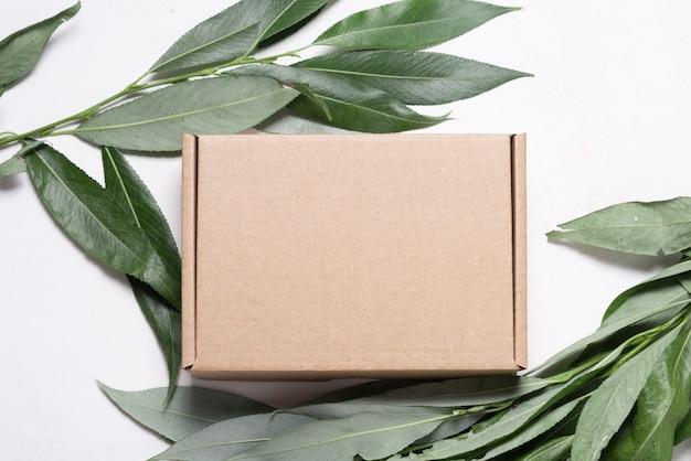 Scatola di cartone marrone con confezione ecologica di ramo di albero fresco
