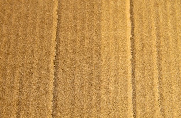 Trama di cartone marrone per lo sfondo