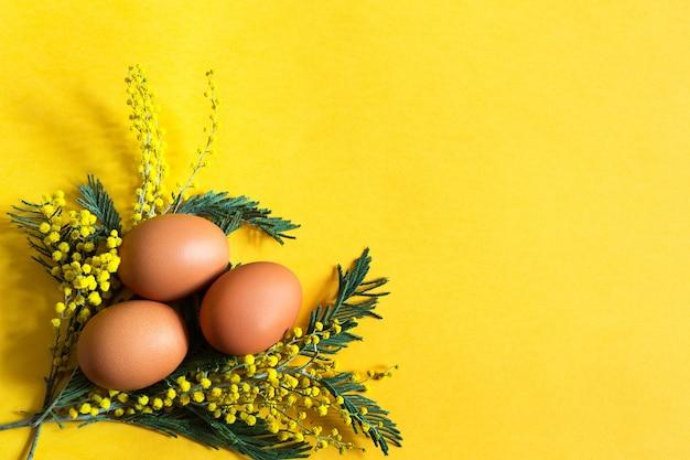 Uova di gallina marroni su uno sfondo giallo e un ramo di mimosa con le ombre.