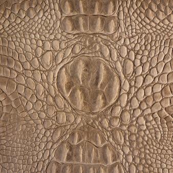 Modello in pelle di coccodrillo marrone e consistenza