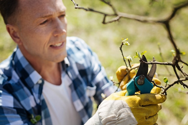 Uomo dai capelli castani con una camicia a quadri che si prende cura del suo giardino potando gli alberi con un paio di cesoie inossidabili