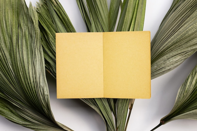 Vecchia carta da pagina vintage marrone su foglie secche di palma tropicale.