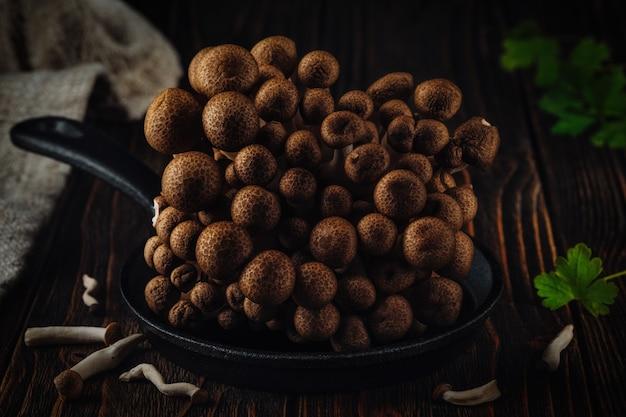 Fungo shimeji marrone su fondo di legno