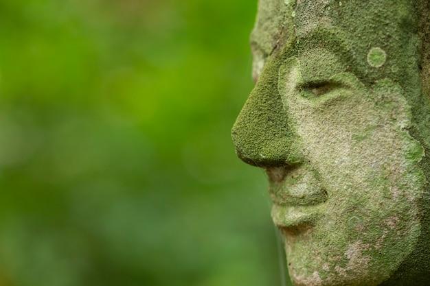 Testa di buddha in wat umong (buddha park), suthep, muang, chiang mai, tailandia