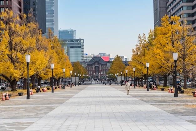 Edifici a tokyo con foglie di autunno
