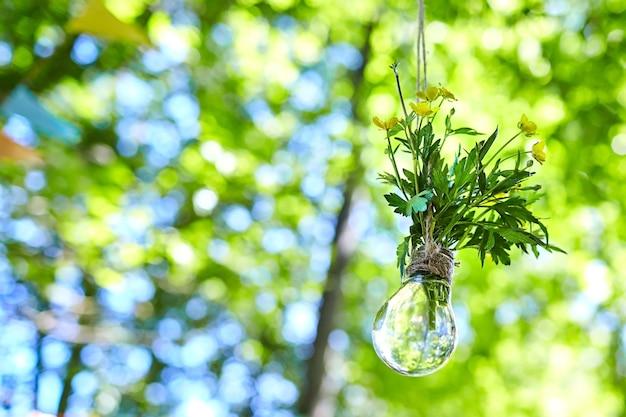 Lampadina con piante fiorite appeso a una corda su sfondo sfocato fogliame verde