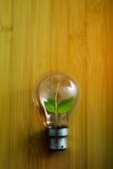 Lampadina con foglia verde sul tavolo di legno