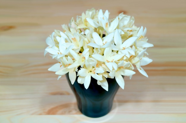 Mazzo di bellissimi fiori bianchi di millingtonia in un vaso blu profondo su un tavolo di legno