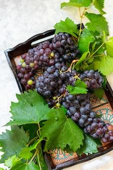 Grappolo d'uva nera su sfondo chiaro