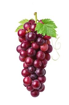 Un grappolo di uva rossa con foglie isolate su sfondo bianco.