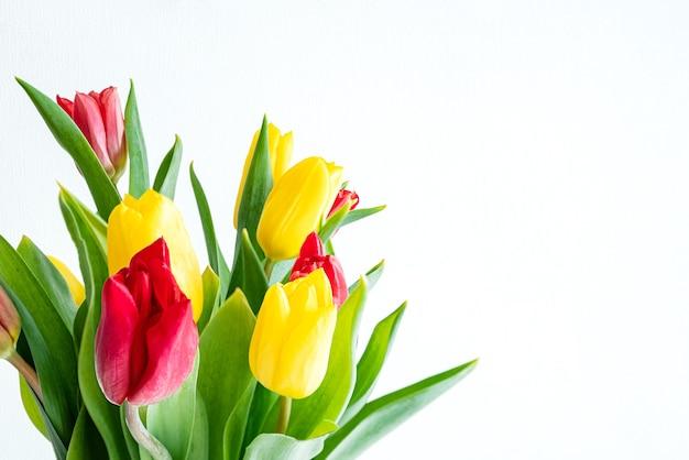 Mazzo di tulipani rossi e gialli su superficie bianca
