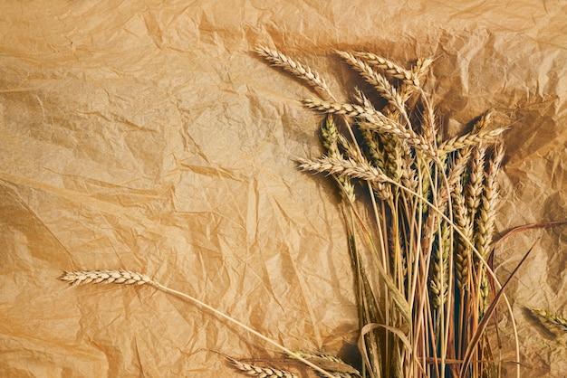 Mazzo di grano dorato maturo su sfondo di carta artigianale