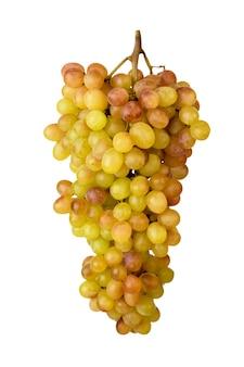 Un grappolo d'uva matura scolpito su uno sfondo bianco, close-up. isolato.