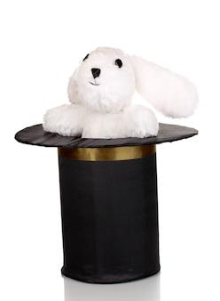 Coniglietto e cilindro nero isolato su bianco