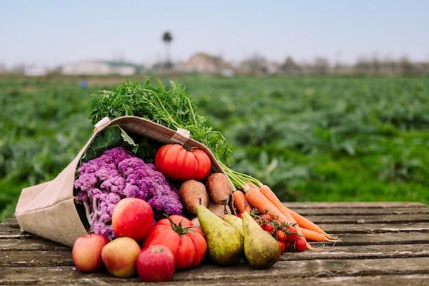 Sacchetto di tela da imballaggio con frutta e verdura in un campo