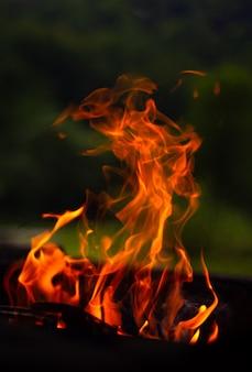 Bruciare il fuoco di accampamento di legno sul braciere sulla natura