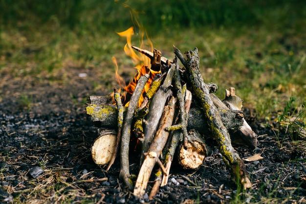 Legna da ardere bruciante nel campo estivo all'aperto