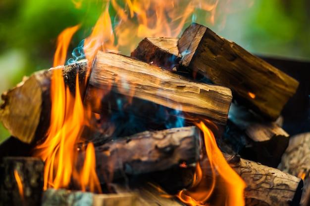 Bruciare tronchi nel fuoco