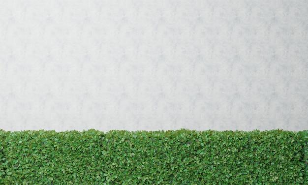 Cespugli e muro bianco rendering 3d Foto Premium