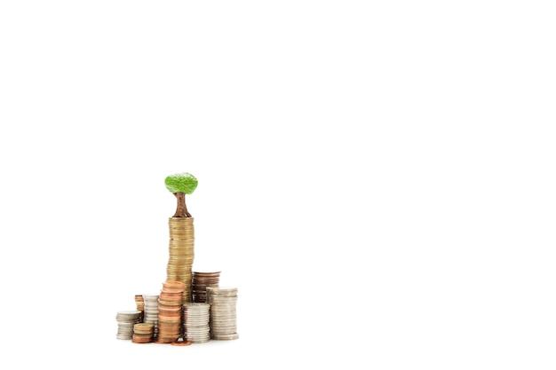 Crescita del business e concetto di sviluppo