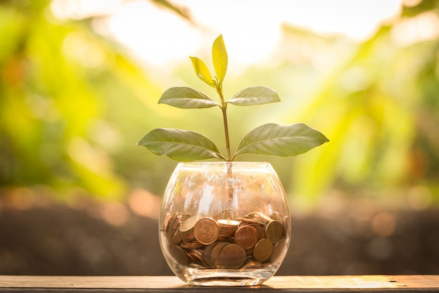 Crescita del business concetto