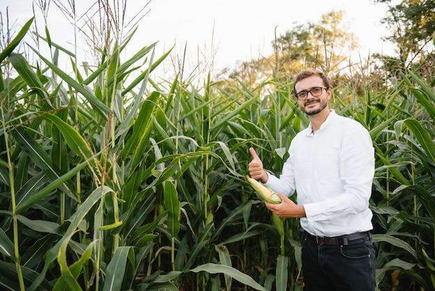 Uomo d'affari nel campo di grano controllando la piantagione