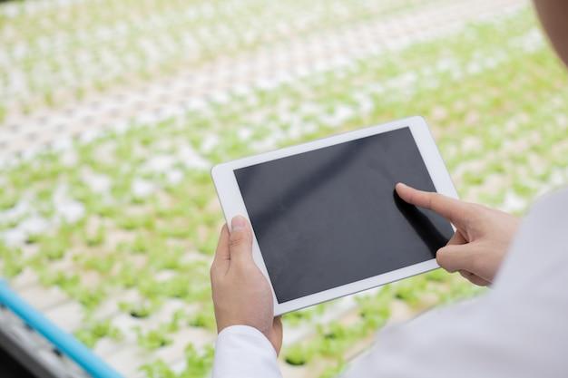 L'uomo d'affari esamina e registra i rapporti sulla qualità delle verdure biologiche dell'azienda agricola tramite tablet. controllo rigoroso delle verdure in azienda. gli agricoltori usano il tablet per controllare la qualità della verdura.