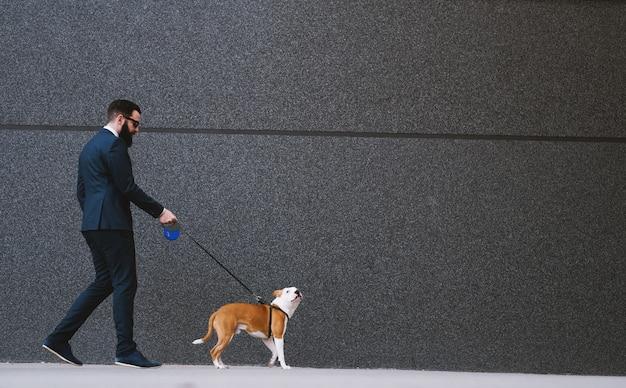 Uomo d'affari che cammina cane in strada.
