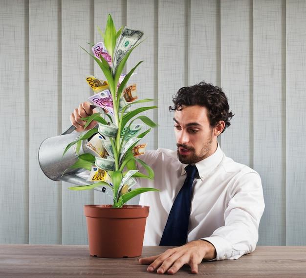 Uomo d'affari che innaffia una pianta che fa crescere i soldi